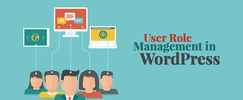 Blog Punya Tim? Gunakan Role User WordPress untuk Membagi Tugas Pekerjaan Anggota Blog
